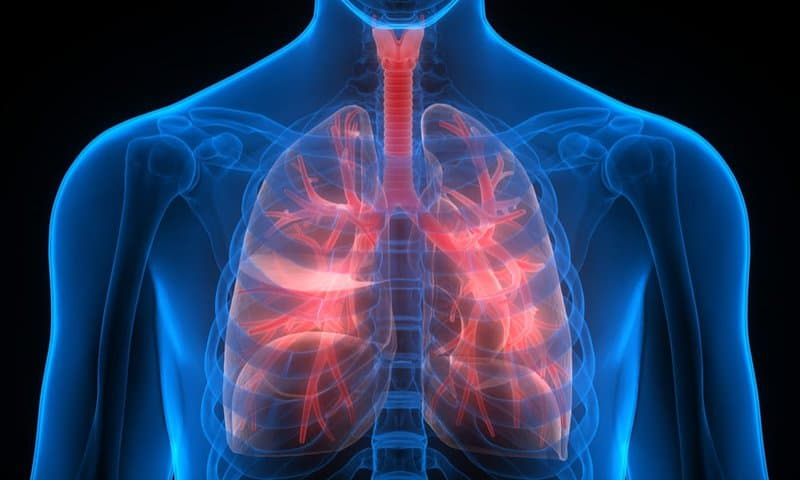 Health risks of vaping on the lungs showing irritations on an exoskeleton on a black background